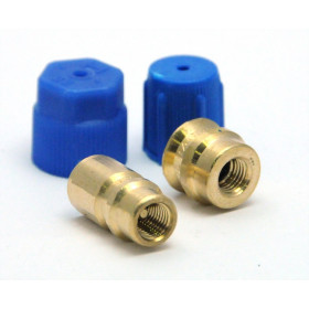 R12 to R134 conversion fittings