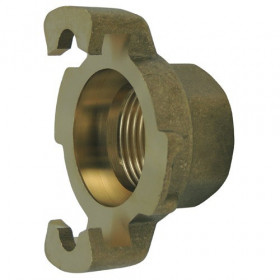 Express coupling with threaded tip, without brass seal