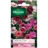 Sachet seeds Double carnation Vilmorin varié