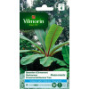 Seed packet Banana tree ornament Musa Ensete Vilmorin