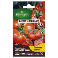 sachet graines Tomate buffalo Steak HF1 vilmorin