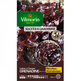 Product sheet Lettuce with grenadine cut