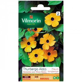 Sachet seeds Thunbergia Alata suzanne with black eyes
