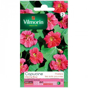 Capucine pink cherry seed packet