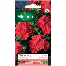 Seed packet Geranium shine red HF2