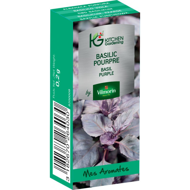 Kitchen Gardening - Basilic Pourpre