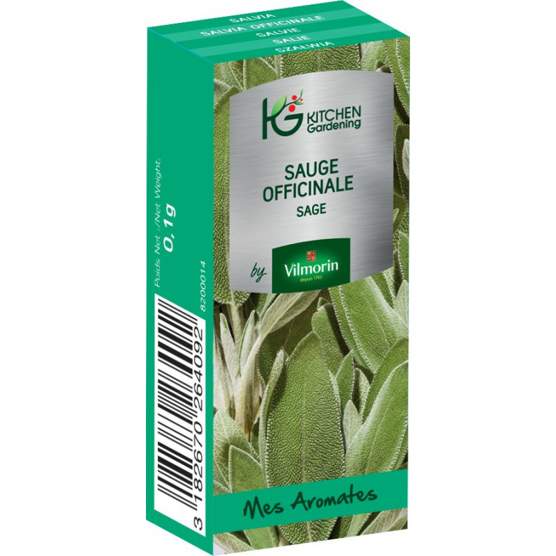 Kitchen Gardening - Sauge Officinale