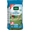 Ultra-resistant 5kgs grass including 1kg free