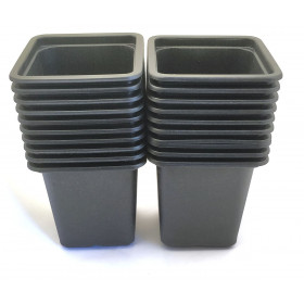 Pack of 20 Square Buckets black plastic 7cm