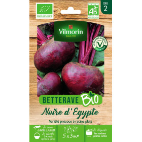 Sachet graines Betterave Noire d'Egypte BIO - Beta vulgaris