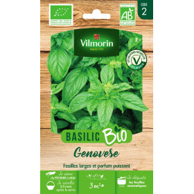 Bag of seeds Basil Genovese BIO - Ocimum basilicum