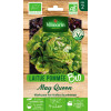 Sachet graines Laitue Pommée MAY QUEEN BIO - Lactuca sativa