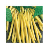 Fortal Butter Bean Seeds - 5 kg bag