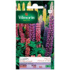 Product sheet Lupine Russel Varied