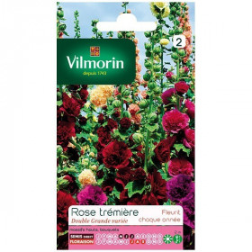 Product sheet Double wide hollyhock