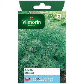 Dill officinale