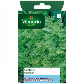 Product sheet Common chervil