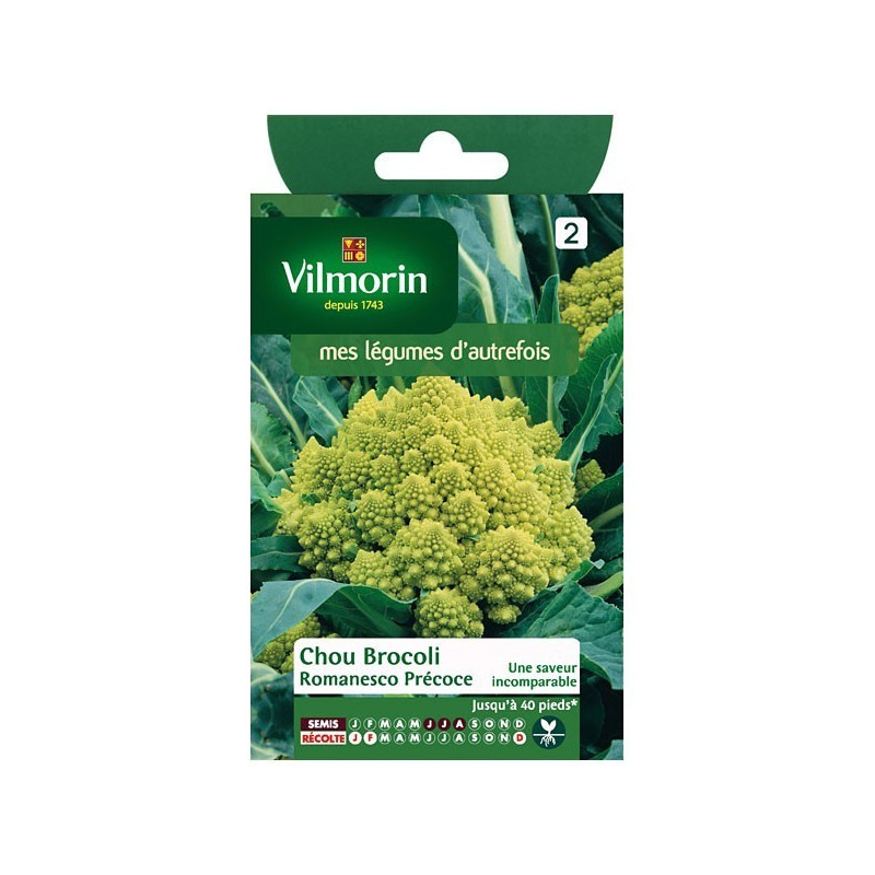 Product sheet Chou Broccoli Romanesco Early