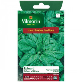 Spinach Giant Winter economical format