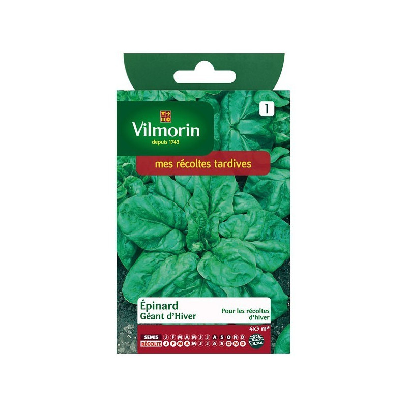 Product sheet Winter Giant Spinach
