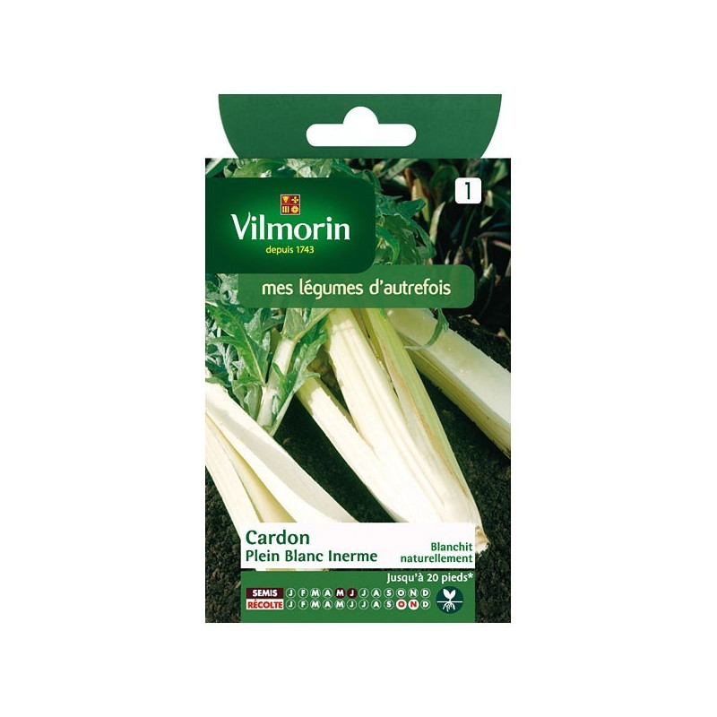 Product sheet Cardoon solid white