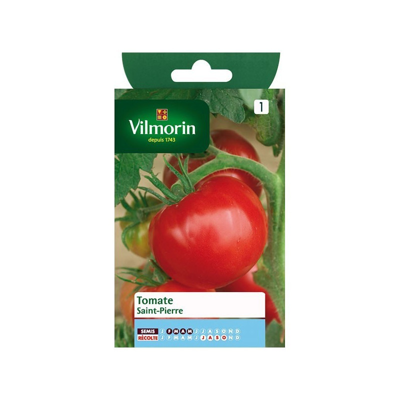 Product sheet Tomato Saint Pierre